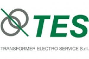 TES-300x201